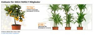 Screenshot der IKEA Family Seite im Online Shop